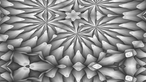 FlowerMotif4 Stock Video Footage