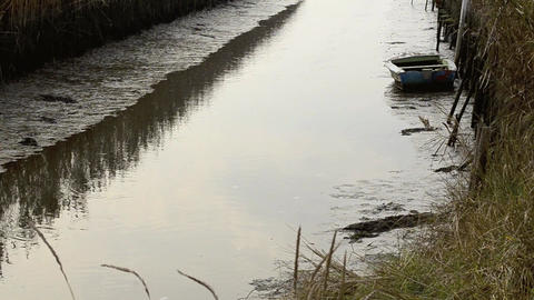 Fishing boat near reed Stock Video Footage