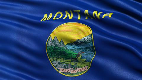 4K Montana state flag seamless loop Ultra-HD Animation