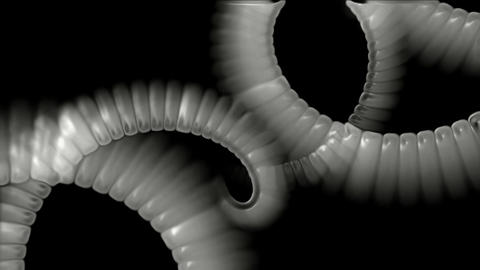 swirl smoke chain stripe ribbon,hairy curve,spiral DNA... Stock Video Footage