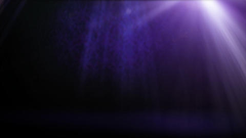 classical purple wall Stock Video Footage