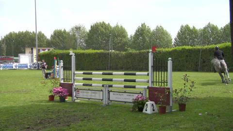 horse race jump 21 Stock Video Footage