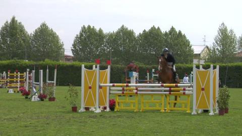 horse race jump 42 Stock Video Footage