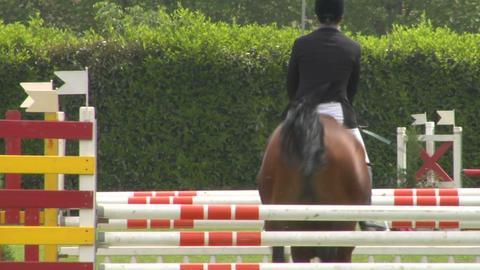 horse race jump 53 Stock Video Footage