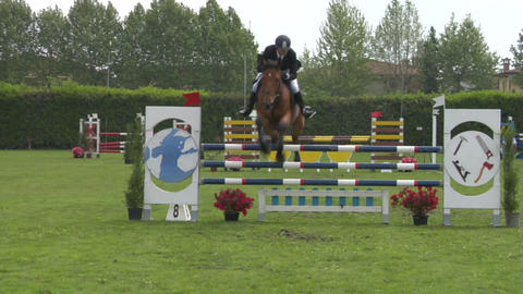 horse race jump 82 Stock Video Footage