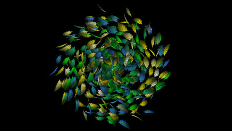 Rotating feathers fancy.pollution,leaves,cotton,catkins,confusion,birdflu,material,texture,Dust,part Animation