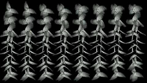 Animation of whirl white... Stock Video Footage