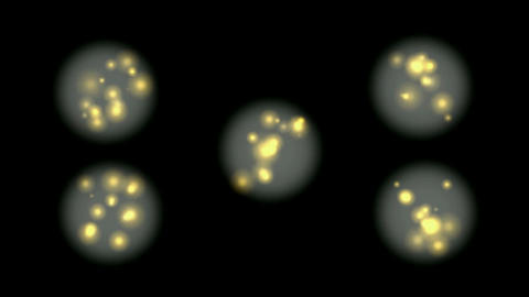 micro cells world under... Stock Video Footage