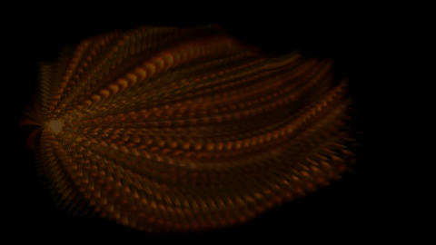 Animation of long fiber.material,texture,spores,neon... Stock Video Footage