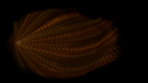 Animation of long fiber.material,texture,spores,neon lights,stylish,dizziness,romance,romantic,stage Animation