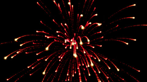fireworks at night,holiday and wedding Animation