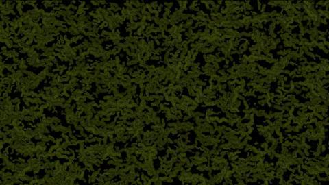 worms,egg,ephemera,plankton,feed,Design,pattern,symbol,dr... Stock Video Footage