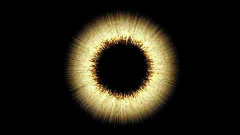 Flashing ring spot.center,magic,fantasy,material,vision,idea,creativity,creative,beautiful,art,decor Animation
