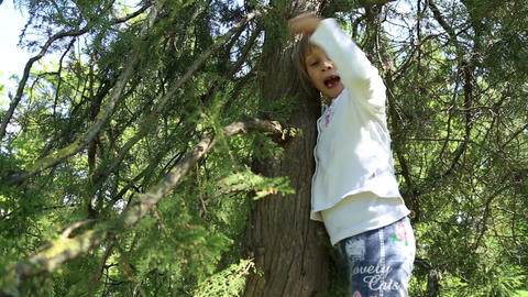The girl climbed on tree Live Action