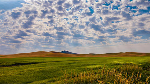 Morning at Palouse WA Footage