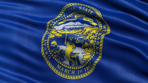 4K Nebraska State Flag Seamless Loop Ultra-HD stock footage