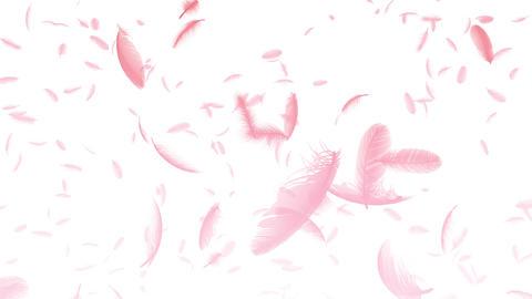 Feather 3 tornado Arw 4 K CG動画