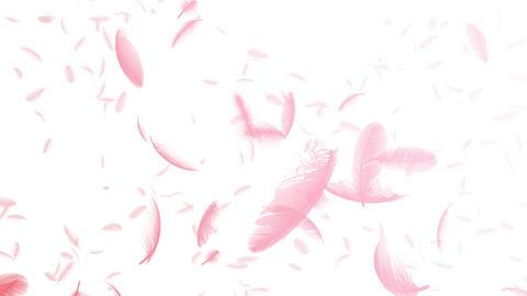 Feather 3 tornado Crw 4 K CG動画