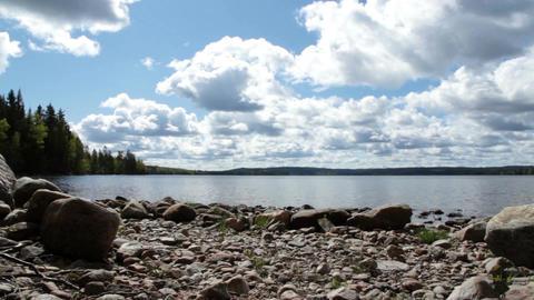 At the lake Footage