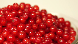 Fresh juicy ripe red currant berries rotating Footage