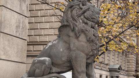 Statue Of Lion, Prague, Czech Republic stock footage