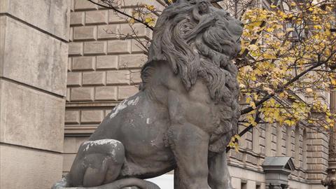 Statue Of Lion, Prague, Czech Republic stock footage