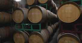 Steadicam Barrels Of Wine In A Cellar stock footage