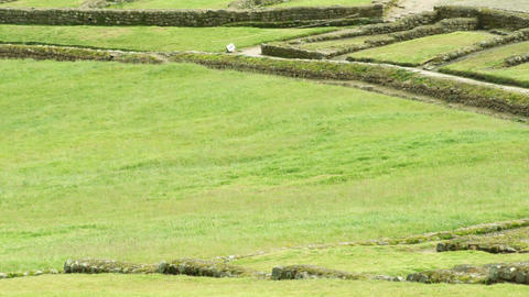 Ancient Inca Civilization Settlement Live Action