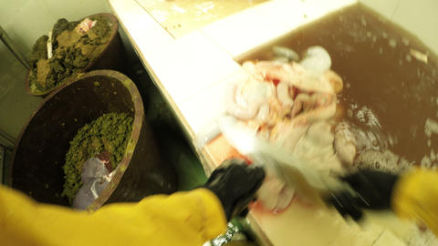 First person view of intestines cleaning room inside slaughterhouse Footage