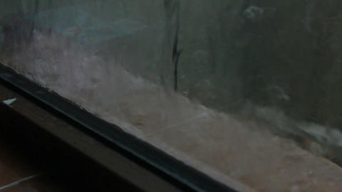 Rain And Ice Storm stock footage