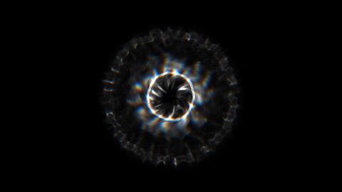 Circular motions Animation