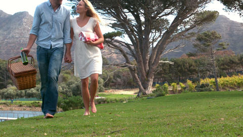 Happy couple walking with picnic basket in slow motion Footage