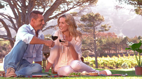 Smiling couple toasting on picnic blanket in slow motion Live Action