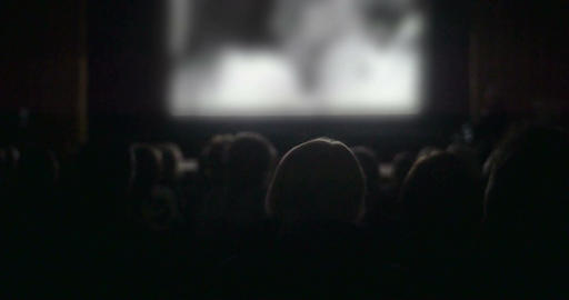 People watching film in the cinema Live Action