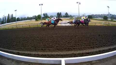 Horse Racing - Track Action stock footage