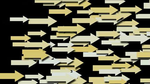 arrow.Objectives,race,flight,business,motivational,manage... Stock Video Footage