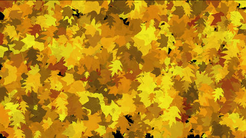 gold maple leaves dance background.life,lush,growth,seasons,autumn,harvest,hope,warmth,memories,midd Animation