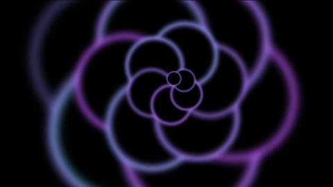 animation of purple flower pattern in black background.modern,stylish,dizziness,romance,romantic,mat Animation