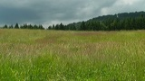 Countryside in Styria Footage