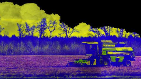 Harvest time Footage
