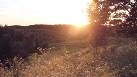 Spring Summer Sunset - Time Lapse stock footage