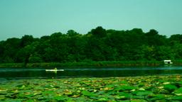 Man With Green Blouse Paddling In Kayak Footage