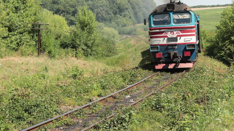 Train-diesel Live Action