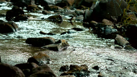 Rocky River Close Up stock footage