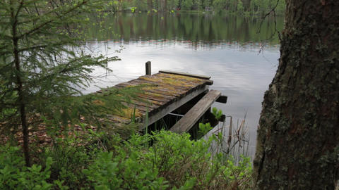 Old wooden dock by a small lake Live Action