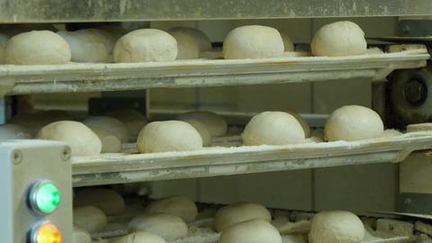german bakery roll bun on conveyor belt elevator 4k 11668 Footage