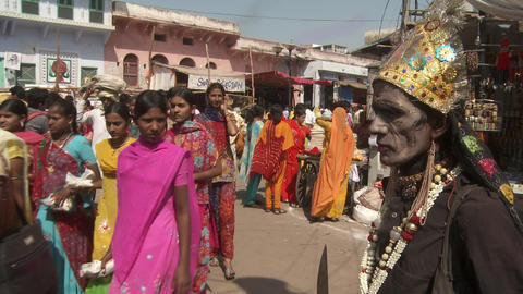 Incredible India stock footage