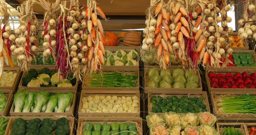 onion chili corn vegetables 02 Footage