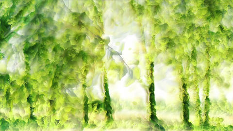 Green park forest Animation