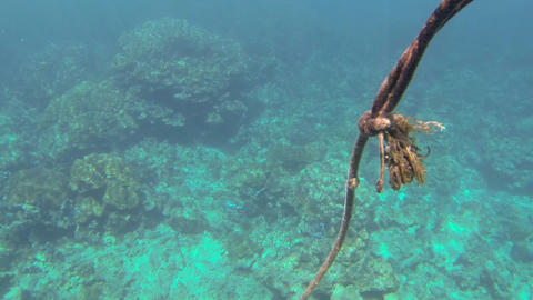 Undersea Loose Rope Rising Towards The Surface stock footage
